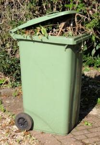 Photo of green bin